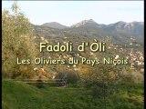Fadoli d'òli - Les oliviers du Pays-Niçois