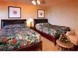 Homes for Sale - 1004 Ocean Blvd - Isle of Palms, SC 29451 - Jennifer Harriett