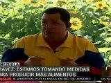 Nace Misión AgroVenezuela para garantizar seguridad y soberanía alimentaria del país