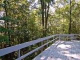 Homes for Sale - 25B Mt Bolus - Chapel Hill, NC 27514 - Susan Richter