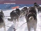 Williwaw et les chiens de traineaux à Orcières !