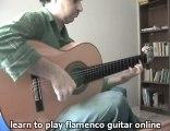 Vicente Amigo - Guitar Lesson - Taranta