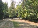 Homes for Sale - 10098 Bent Creek Dr - Loveland, OH 45140 - Sarah Muller
