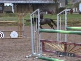 obstacle cheval de CSO
