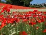 Provence-Alpes-Côte d'Azur - Pays d'Aix, Cézanne