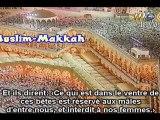 Shuraim Taraweeh 1998 / 1419 Al An'am V 129-147 PARTIE 2