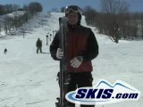 Dynastar D-Stinct Carbon 2009 ski review