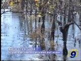 MARGHERITA DI SAVOIA | Si lavora per liberare gli arenili dall'acqua