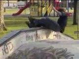 Skateboarding SLAMS