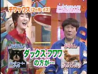 日本テレビ 世界まる見えテレビ特捜部