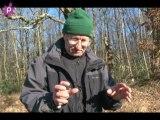Juigné les Moutiers : la reproduction des grenouilles rousse
