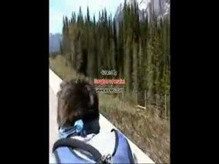 4600 kilometers on a downhill bike