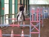 Concours Equitation Camille CSO Club2