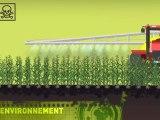 OGM, les Organismes Génétiquement modifiés