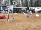 Orsane, 1er concours d'agility, la suite !