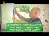 Tg 17 Agosto Leccenews24 politica cronaca sport, l'informazione 24 ore