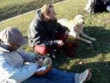 Pique nique au Bois de Boulogne avec 15 chiens