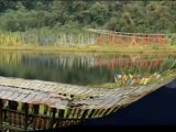 Travel To Care Taste of Sikkim Package Holidays Mumbai India Travel Guide