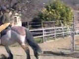 rhonyx son premier saut, un gros ça saute aussi!