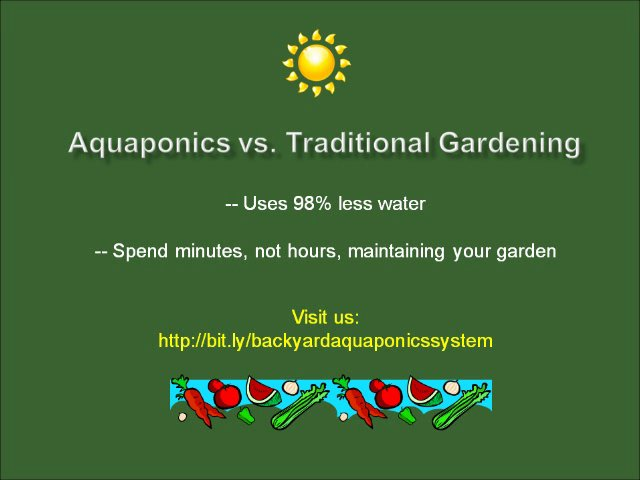 How to Build a Backyard Aquaponics System