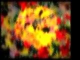 İmam-ı Gazali (r.a)-Mezara Girince