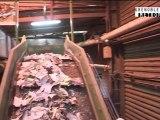Dans les coulisses du centre de tri des déchets