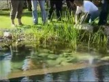 Piscine naturelle BioNova - Tendance au Bois
