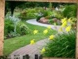 www.Soil-Compaction.info | yellow spots in grass | liquid lawn food | organic lawn food
