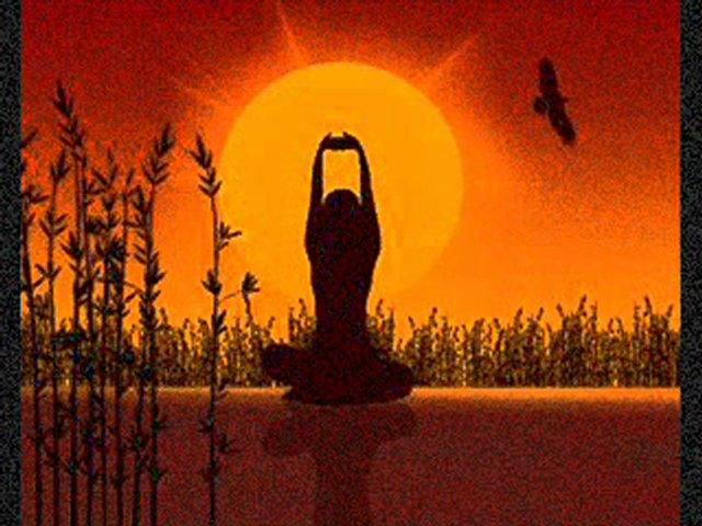 Momentum Coaching & Yoga