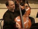 Vivaldi. Concerto pour violoncelle in Mi menore, C. Coin, Il Giardino armonico.