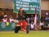 Pencak Silat Martial Arts Indonesia 30