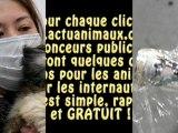 ACTU ANIMAUX : UN PETIT GESTE POUR UNE GRANDE CAUSE