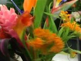 Composition d'un Bouquet Nord-Sud avec les ateliers d'Aquarelle
