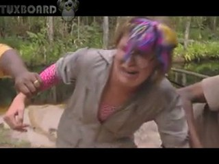 Dutch girl attacked by snake on TV