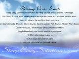 Ocean Sounds Mp3 Download - Sound Of The Relaxing Ocean