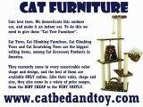 Cat Scratching Furniture – Domesticated Cats Require It