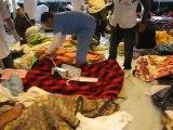Libye : évacuation de blessés par bateau vers la Tunisie