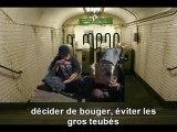 """CLIP NTMG  SOUS-TITRé  """"A L'AUBE DE L'AGE ADULTE"""""""
