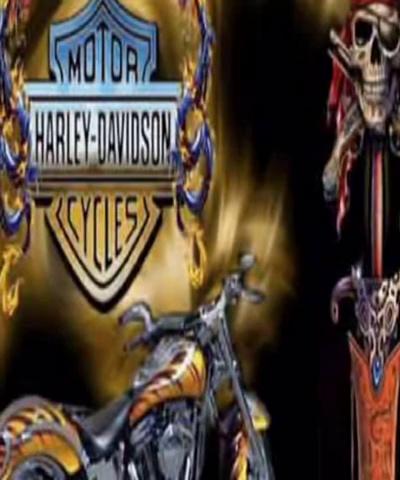 Harley Davidson WM