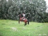 Horse Jumps Rope - CollegeHumor Video