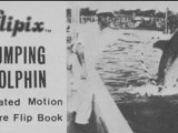 Flipbook : LE DAUPHIN ACROBATE