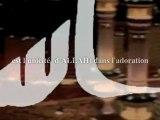 L'importance du TAWHID al 3ibadah dans la da3awah ila Allah [Islam Al Haqq]