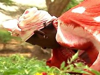 SOS Faim vidéo : l'agriculture paysanne : stop ou encore? Partie 1