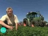 Agriculture Biologique - Des sols vivants et fertiles