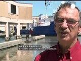 Les conséquences de la marée noire du Golfe du Mexique...