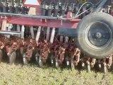 Semis direct du blé 2010 / Direct seeding of wheat 2010