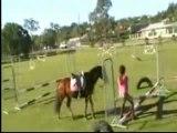 0256 - Elle tombe la barre entre les jambes en équitation