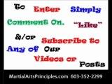Adult Martial Arts Lessons. Martial Arts Principles