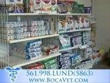 Lund Animal Hospital, Boca Vet, Boca Raton Veterinarian