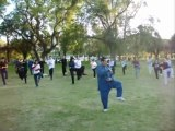 世界太极与气功日. Día Mundial del Tàijíquán y Qìgōng. Mendoza, 30 de abril de 2011